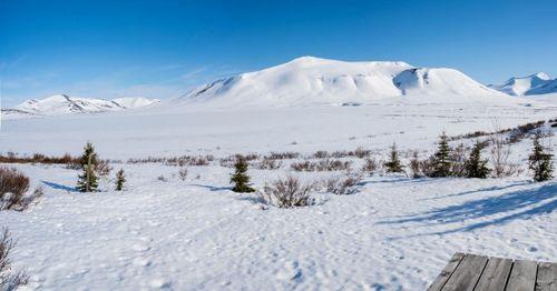 Coast Guard rescues bear attack victim in Alaskan wilderness