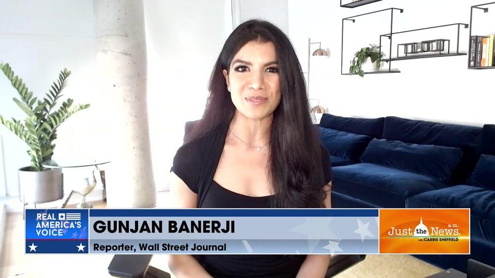 "Gunjan Banerji, WSJ Reporter - ""Meme Stocks"" create social media traders vs. Wall Street traders"